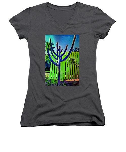 Green Fence Women's V-Neck T-Shirt