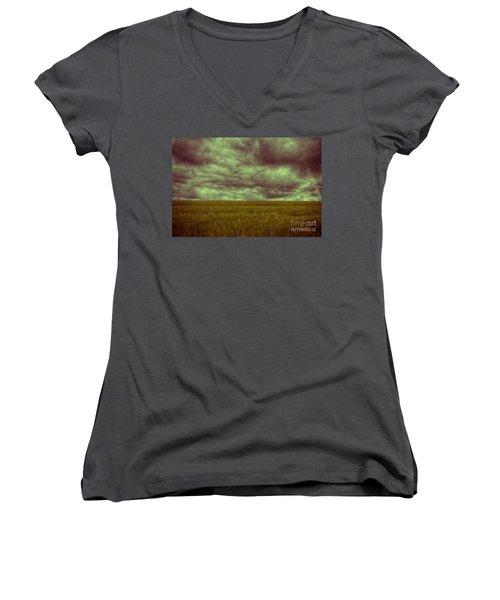 Green Fields 3 Women's V-Neck T-Shirt (Junior Cut) by Douglas Barnard