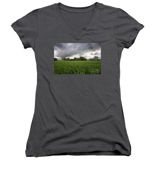 Green Fields 5 Women's V-Neck T-Shirt (Junior Cut) by Douglas Barnard