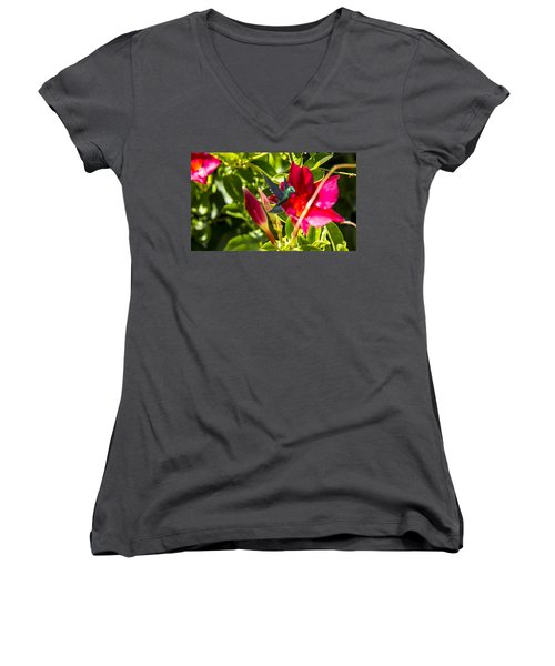 Green Hummingbird Women's V-Neck T-Shirt (Junior Cut) by Pat Cook