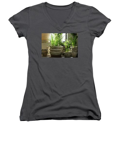 Green Plants In Old Clay Pots Women's V-Neck (Athletic Fit)