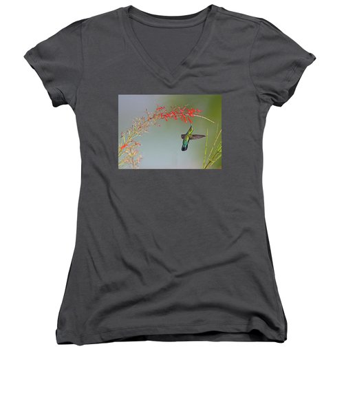 Green-throated Carib Women's V-Neck (Athletic Fit)