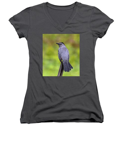 Women's V-Neck T-Shirt featuring the photograph Grey Catbird by Debbie Stahre