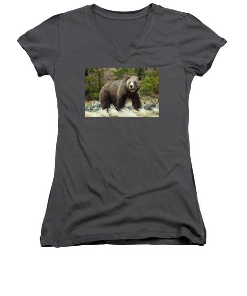 Grizzly Bear Women's V-Neck (Athletic Fit)