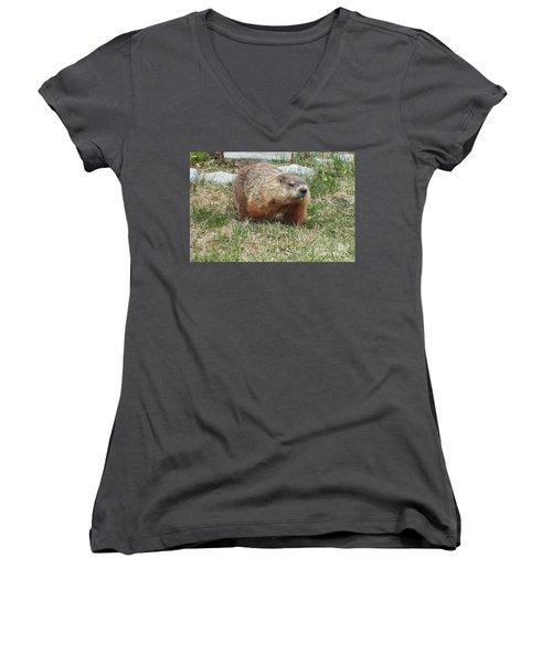 Groundhog Women's V-Neck T-Shirt