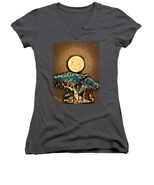 Grounding Women's V-Neck T-Shirt