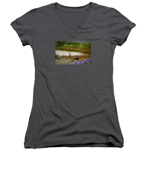 Guardian Women's V-Neck T-Shirt (Junior Cut) by William Beuther