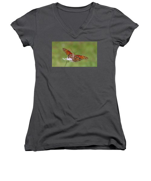 Gulf Fritillary On Elephantsfoot Women's V-Neck (Athletic Fit)