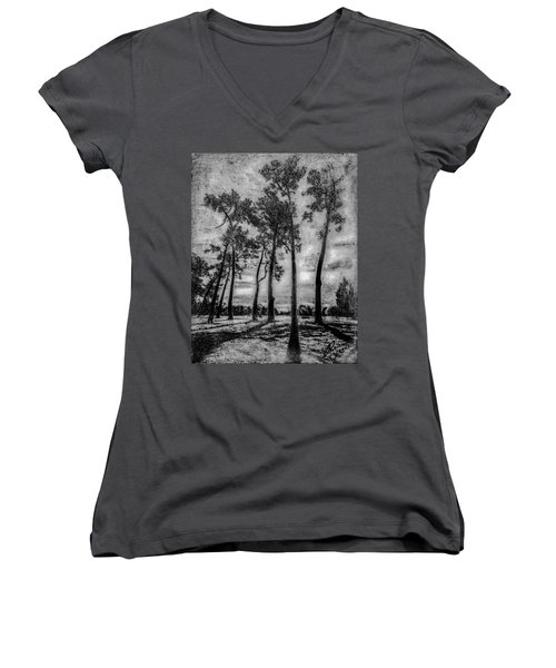 Hagley Park Treescape Women's V-Neck (Athletic Fit)