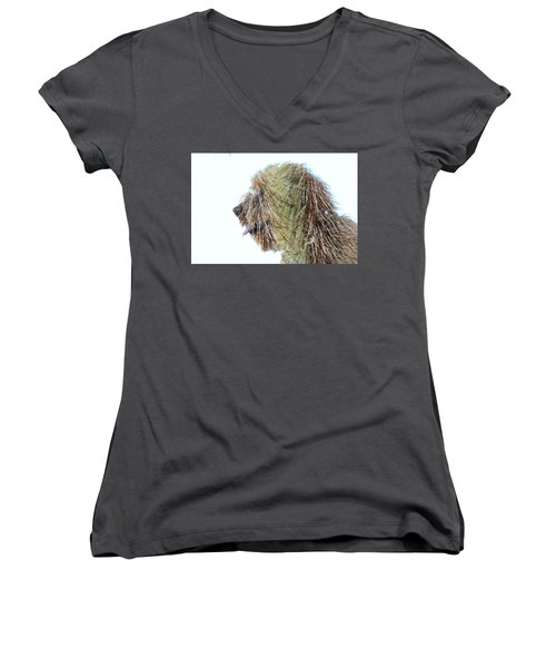 Hairy Doodle Women's V-Neck (Athletic Fit)