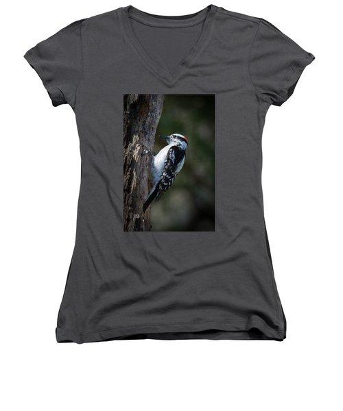 Downy Woodpecker Women's V-Neck T-Shirt (Junior Cut) by Kenneth Cole