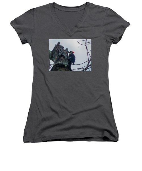Hammering It Home Women's V-Neck T-Shirt