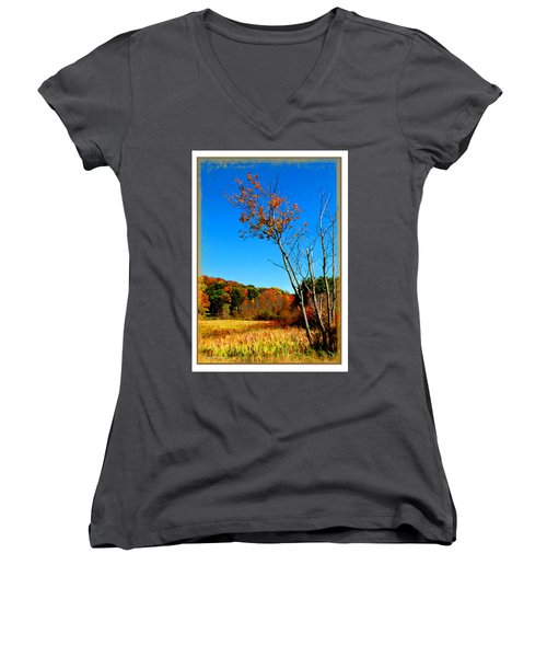 Women's V-Neck T-Shirt (Junior Cut) featuring the photograph Hanging On To Autumn by Joan  Minchak