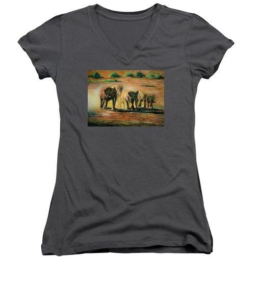 Happy Family Women's V-Neck T-Shirt