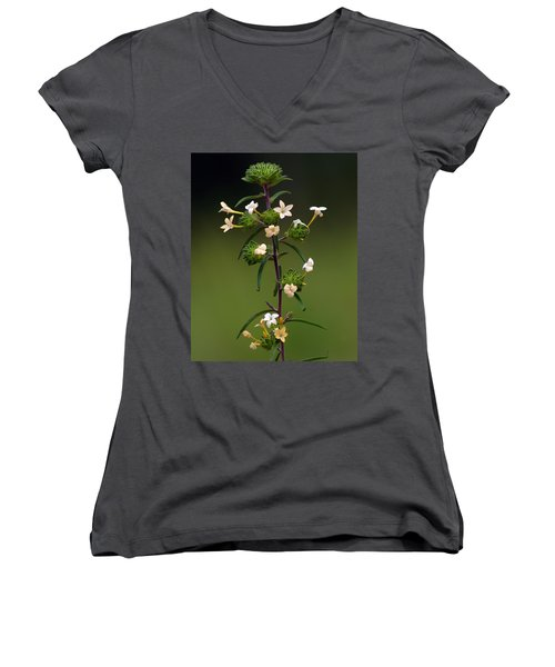 Happy Flowers Women's V-Neck