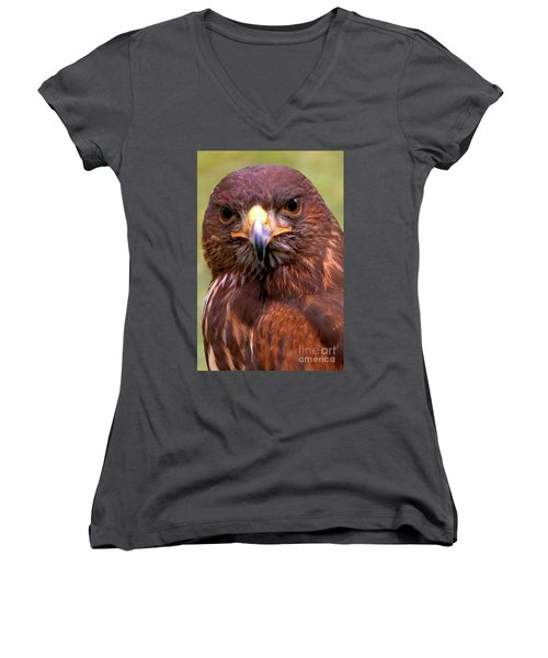 Harris Hawk Portriat Women's V-Neck T-Shirt (Junior Cut)