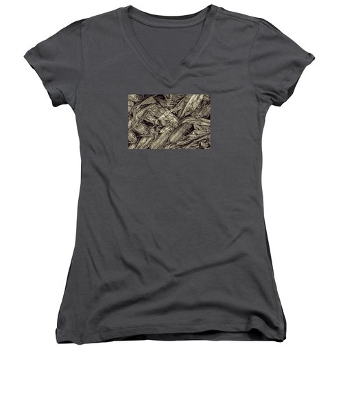 Harvest Women's V-Neck T-Shirt (Junior Cut) by Pat Cook