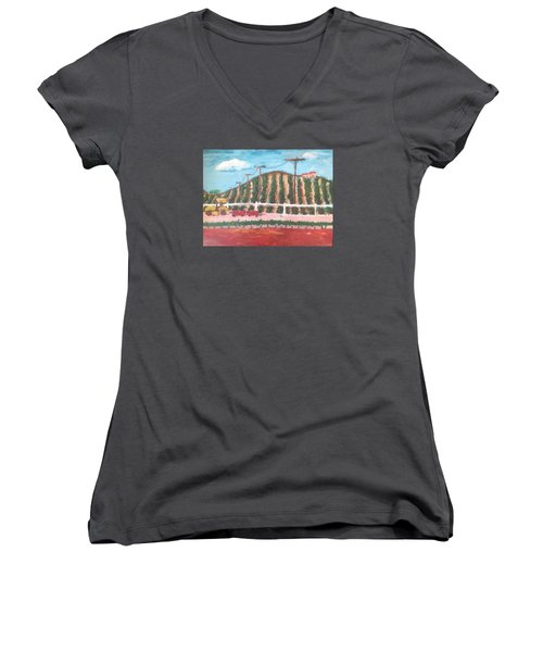 Harvest Season Temecula Women's V-Neck T-Shirt (Junior Cut) by Roxy Rich