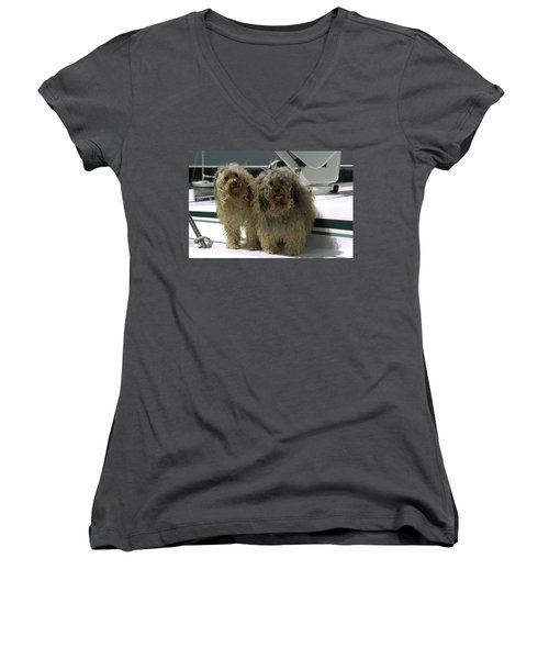 Women's V-Neck T-Shirt (Junior Cut) featuring the photograph Havanese Dogs by Sally Weigand