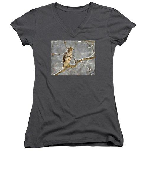Hawk On Lookout Women's V-Neck T-Shirt