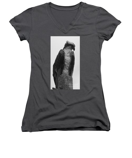 Hawk Perched Women's V-Neck