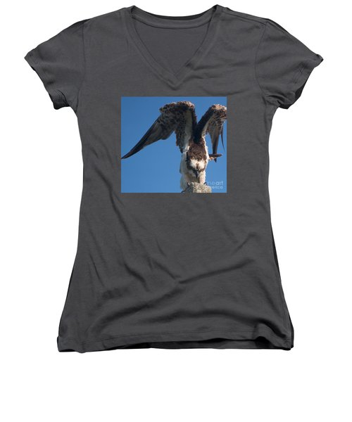 Hawk Prepares For Flight Women's V-Neck