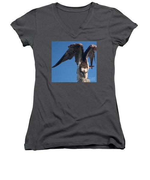 Hawk Prepares For Flight Women's V-Neck
