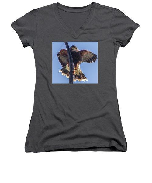 Hawk Watch 6 Women's V-Neck