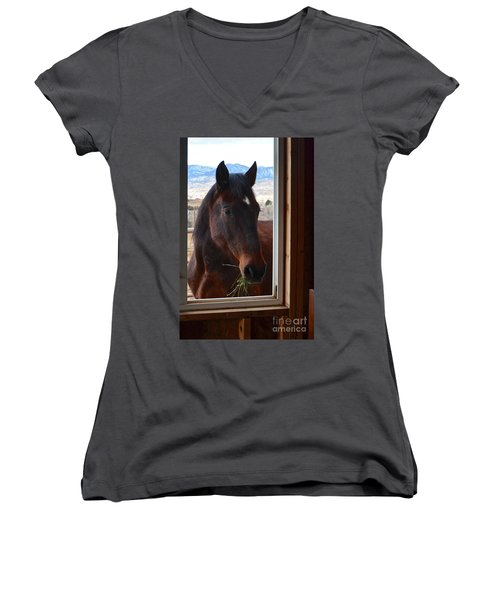 Hay There Women's V-Neck