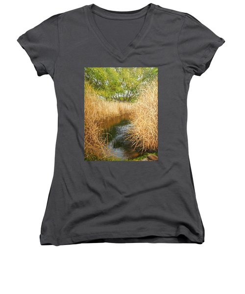 Hear The Croaking Frogs Women's V-Neck (Athletic Fit)