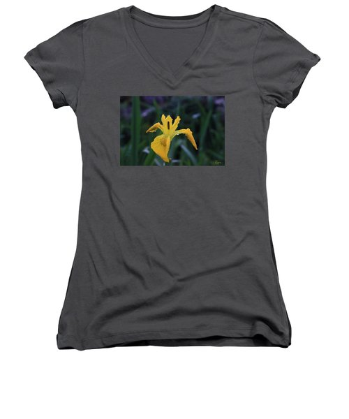 Heart Of Iris Women's V-Neck