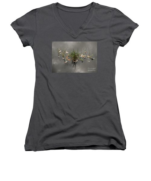 Heaven In The Swamp Women's V-Neck T-Shirt