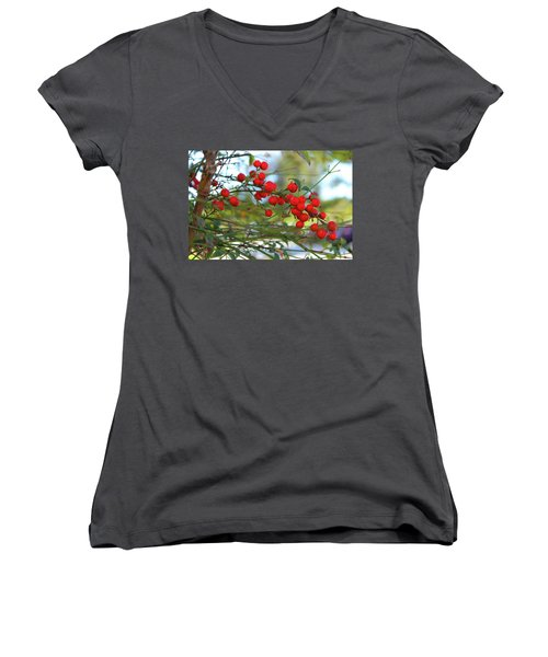 Heavenly Bamboo Women's V-Neck