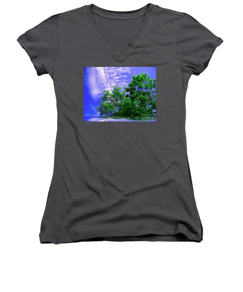 Women's V-Neck T-Shirt (Junior Cut) featuring the photograph Heavenly by Elfriede Fulda