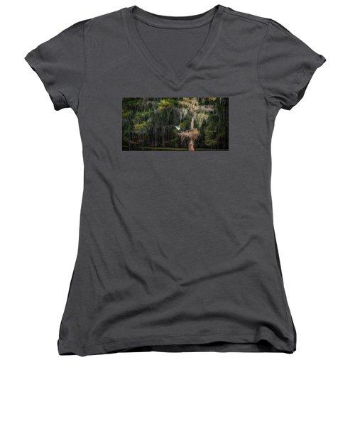 Heavenly Nest  Women's V-Neck T-Shirt