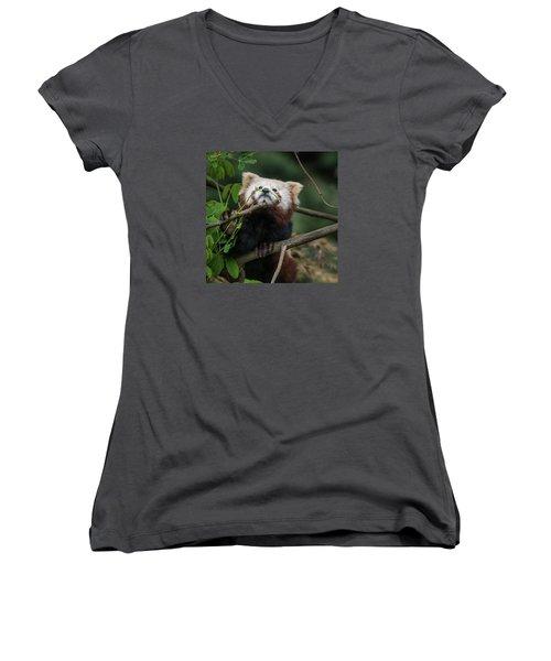 Heavenwards Women's V-Neck T-Shirt (Junior Cut) by Greg Nyquist