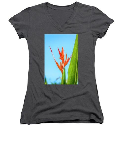 Heliconia Flower Women's V-Neck