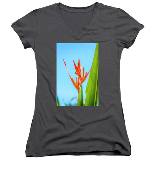 Heliconia Flower Women's V-Neck (Athletic Fit)