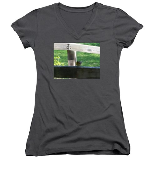 Women's V-Neck T-Shirt (Junior Cut) featuring the photograph Hello by Wendy Shoults