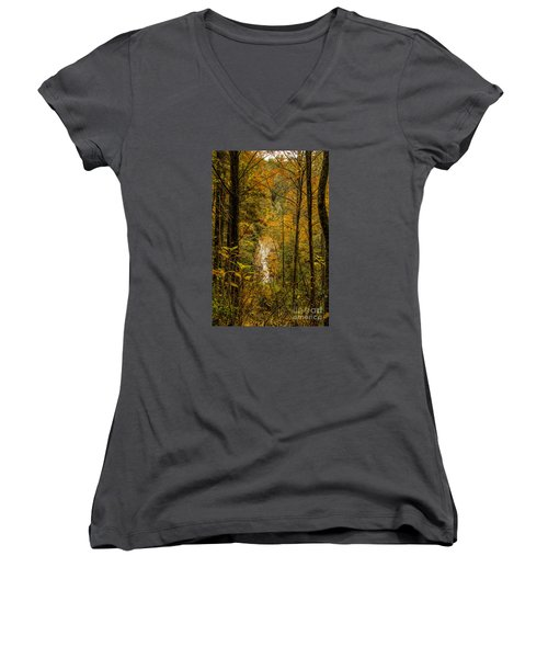 Helton Falls Through The Leaves Women's V-Neck T-Shirt (Junior Cut) by Barbara Bowen