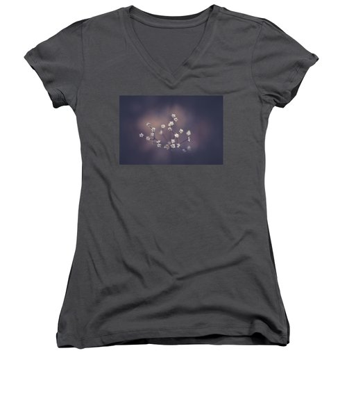 Women's V-Neck T-Shirt (Junior Cut) featuring the photograph Here And There by Shane Holsclaw