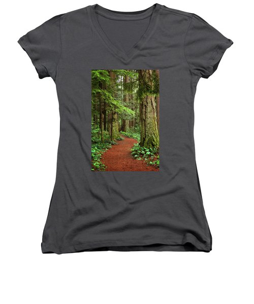 Heritage Forest 2 Women's V-Neck T-Shirt (Junior Cut) by Randy Hall