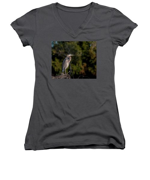 Heron At Sunrise Women's V-Neck (Athletic Fit)