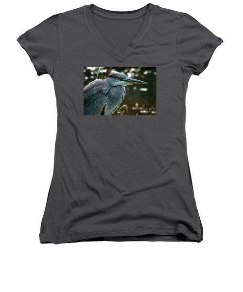 Herons Looking At You Kid Women's V-Neck T-Shirt