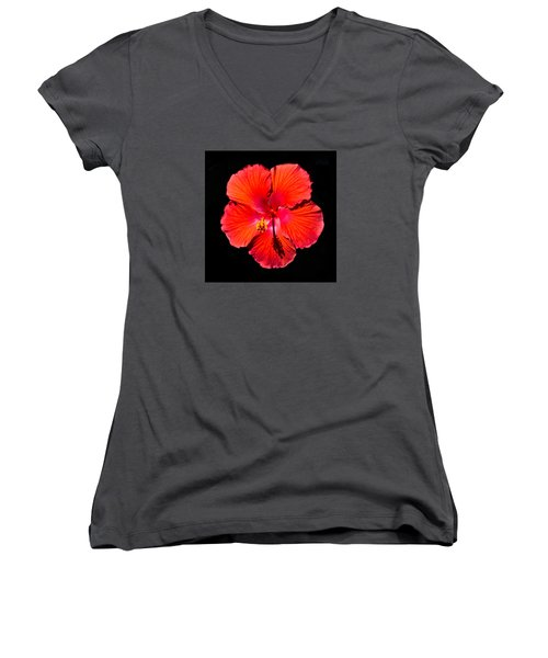 Hibiscus Flower Women's V-Neck T-Shirt (Junior Cut) by Kenneth Cole