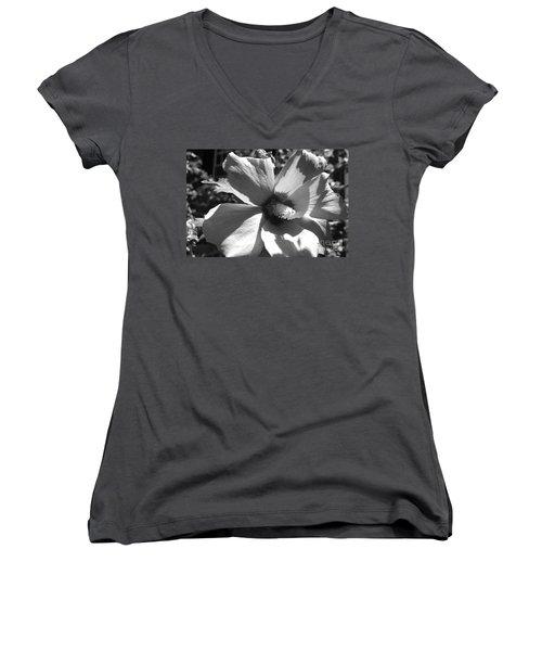 Hibiscus In Bloom Women's V-Neck