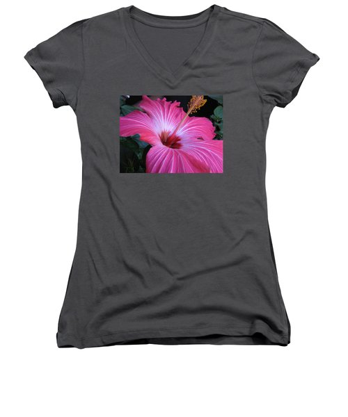 Hibiscus Photograph Women's V-Neck T-Shirt (Junior Cut) by Barbara Yearty