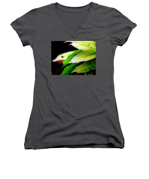 Hickory Leaf Women's V-Neck T-Shirt