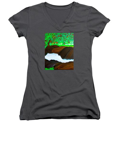 Hidden Paradise Women's V-Neck T-Shirt