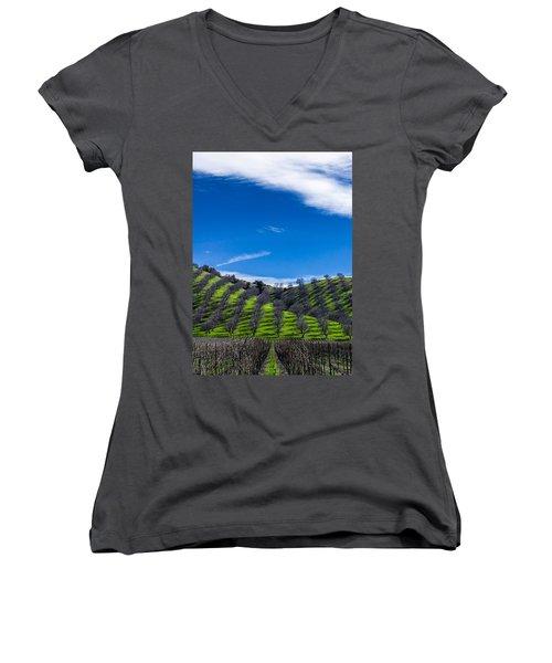 Hidden Valley Hills Women's V-Neck T-Shirt